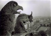 Photograph of gargoyles on top of Notre Dame Cathedral in Paris